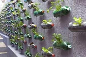 vertical-garden-bottles-sao-paulo-2